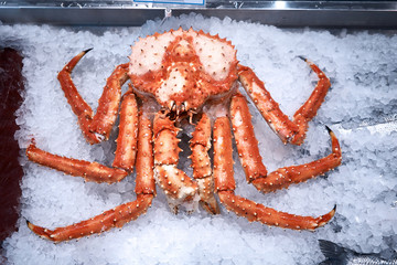 arctic snow crab on ice in market