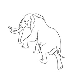 elephant graphic line, goes, vector