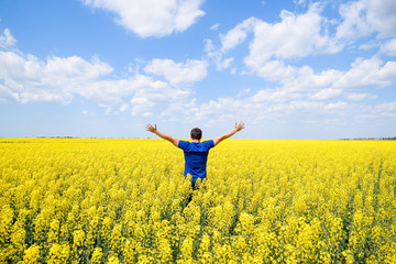 Free man in the field. The man raised his hands up. Field of flowering rape.