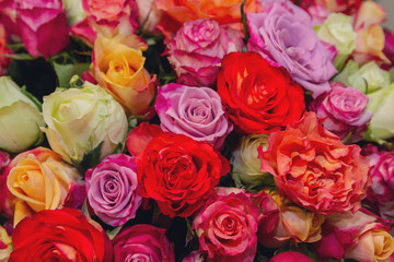 Beautiful background of colorful roses. Wedding Decorations