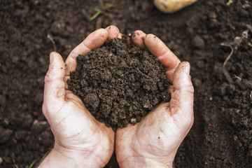 A handful of earth in the hands of a farmer closeup