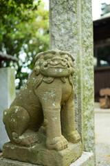 香川県 男木島 神社 狛犬