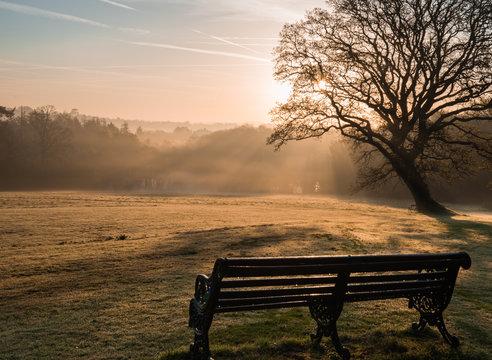 Misty sunrise bench