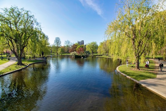 Beautiful spring day at Boston Common Park