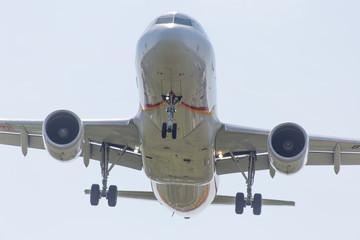 宮崎空港に着陸態勢で進入してくる旅客機