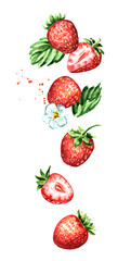 Falling Red ripe berries strawberry, vertical composition. Watercolor hand drawn illustration,  isolated on white background