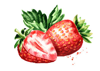 Red berries strawberry. Watercolor hand drawn illustration  isolated on white background