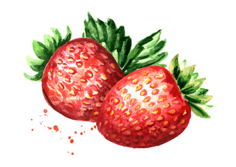 Red berries strawberry. Watercolor hand drawn illustration,  isolated on white background