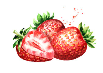 Red ripe berries strawberry. Watercolor hand drawn illustration  isolated on white background