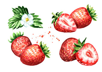 Ripe berries strawberry compositions set. Watercolor hand drawn illustration  isolated on white background