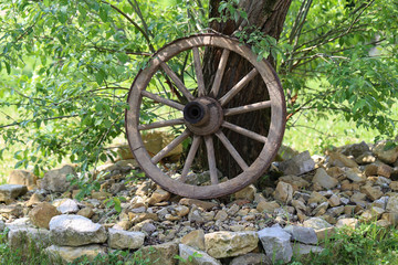 The old wheel from the cart