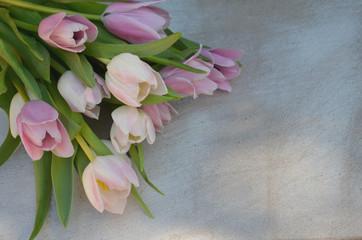 Tulpen auf Vintage Hintergrund