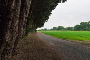 Geschotterter Wald- und Feldweg
