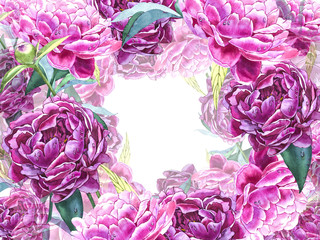 Natural pink peony background. Frame of red and pink peony, watercolor illustration.