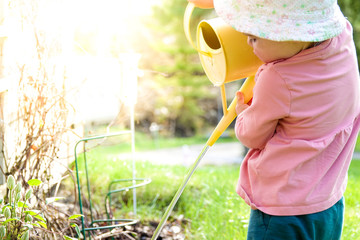 A little baby girl watering flowers with a yellow water pitcher. Child with sun hat at sunset a hot summer evening.