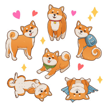 Shiba inu illustrations set. Cute and funny dog in different poses: sitting, standing, lying. Isolated on white