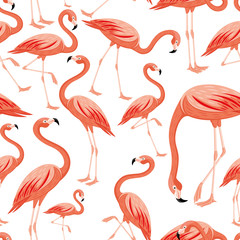 Seamless pattern with pink flamingos on white background.