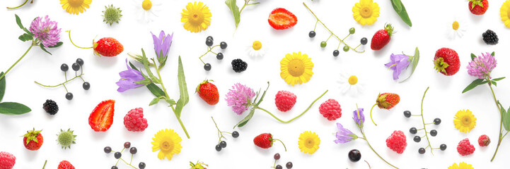 pattern from plants, wild flowers and  berries, isolated on white background, flat lay, top view. The concept of summer, spring, Mother's Day, March 8.