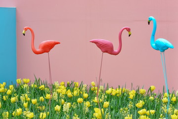 Plastic garden decorative colorful flamingos in the daffodils and tulips in the flowerbed in the king's flowers garden Keukenhof (Garden of Europe), Holland, The Netherlands