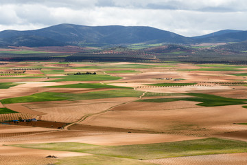 Consuegra, Spain - April 29, 2018: panoramic view of the multicolored cultivated plain