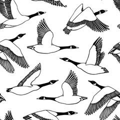 Hand drawn wild goose pattern