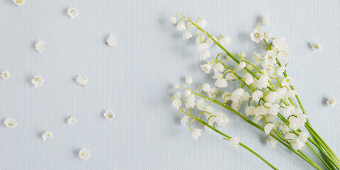 Fototapete - Lily of the valley  on a blue paper textured background. Pattern of small flowers of the may-lily. Abstract floral background.Top view, flat lay. March 8, mother's day background.