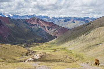 Rainbow Mountain Hike with Horses and amazing landscapes