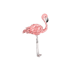 Abstract trendy pastel pink flamingo painting illustration