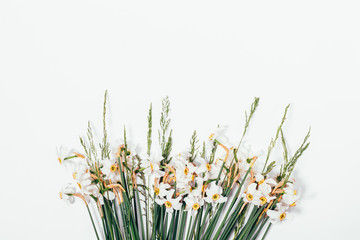 Bouquet of beautiful narcissus with green spikelets