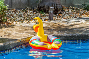 Pool Float Waiting for a Summer Splash