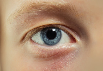 Blue eye with blond eyelashes and brow. Eye with no makeup. Natural beauty look and no make up