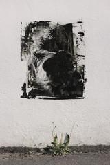 Graffitiwand Graffiti Gorilla Affe Gesicht Streetart