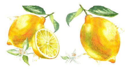 Yellow lemon with tow leaf, lemon slice, flower and spray paint watercolor illustration on an isolated white background