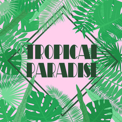 Vector image of tropical leaves on a pink background with an inscription in a rhombus tropical paradise. Botanical illustration.
