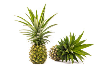 Two ripe fresh pineapple isolated on white background.