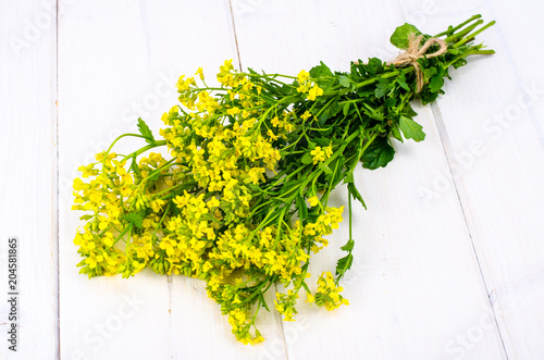 Bunch Of Stems With Small Yellow Flowers Stock Photo And Royalty