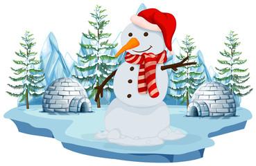 A Snowman in Norh Pole