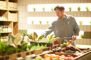 Young buyer with shopping basket choosing fresh vegetables in farming supermarket