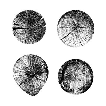 Set of tree rings background. For your design conceptual graphics. Vector illustration. Isolated on white background