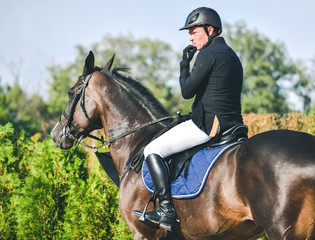 Showjumping competition, bay horse and rider in black uniform performing jump over the bridle. Equestrian sport background. Beautiful horse portrait during show jumping competition.