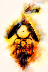 dream catcher with eagle and raven feathers and softly blurred watercolor background.