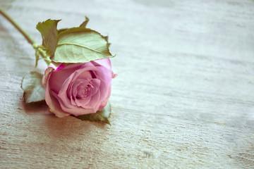 Einzelne Rose, Hintergrund Holz, zum Beschreiben