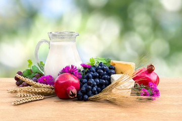Grapes, garnets, milk in a pitcher, yellow and white cheese, pink flowers, barley and wheat on wooden table on a blur nature background