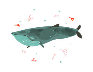 Hand drawn vector abstract cartoon graphic summer time underwater illustrations with coral reefs and beauty big whale character isolated on white background