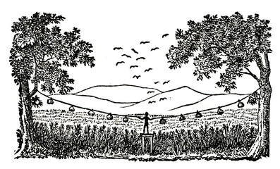 Man from Cumbry people deployed scarecrows around his cereal field; Middle Niger Region, Northern Nigeria,  Western Africa (from Das Heller-Magazin, October 23, 1834)