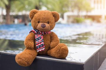 Teddy bear resting at swimming pool.