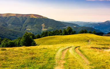 country road through grassy hillside. lovely summer scenery of Carpathian mountains. Apetska mountain in the distance