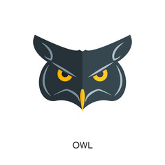 logo owl isolated on white background , colorful brand sign & symbol for your business