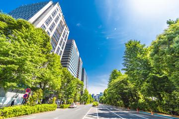 新緑と東京のビル群
