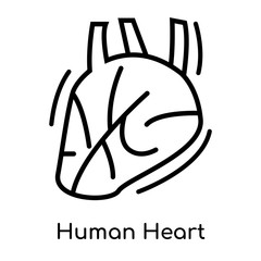 Human Heart icon isolated on white background , black outline sign, linear modern symbol